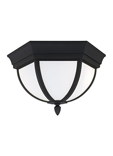 Sea Gull 79136-12 Wynfield Outdoor Ceiling Flush Mount, 2-Light 120 Total Watts, Black by Sea Gull Lighting