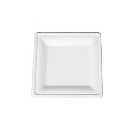 Go-Green Eco-Friendly 100% compostable, Sugarcane Fiber, Disposable 6-Inch Square Plate, 125 Pack (Plate Inch Square 6)