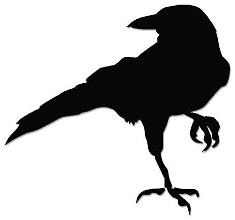 Amazoncom Raven Bird Vinyl Decal Sticker For Vehicle Car Truck - Bird window stickers amazon