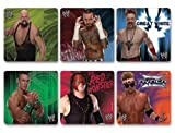 WWE Stickers 100 per roll