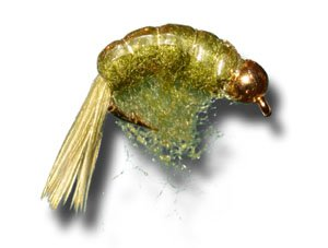 BH Scud - Olive Fly Fishing Fly - Size 14 - 3 Pack