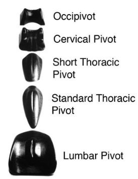 Pivotal Therapy Occipivot - Pivotal Therapy System Component