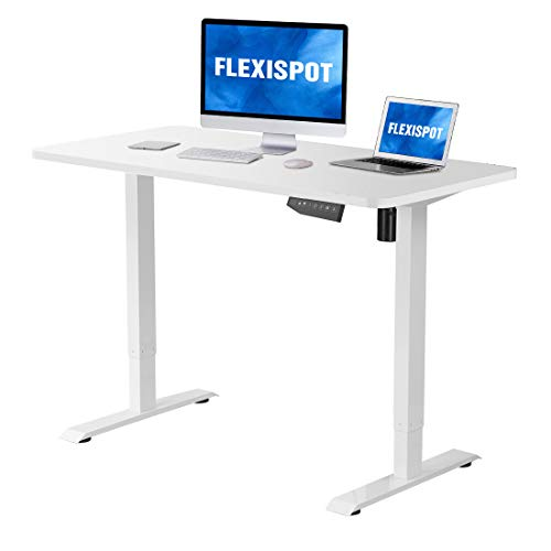 Flexispot Electric Stand Up
