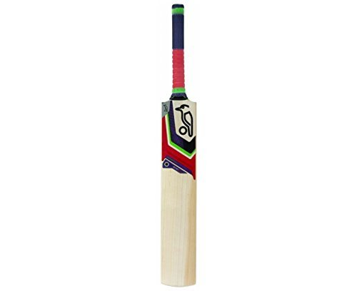 Kookaburra Instinct 300 Cricket Bat - Purple, Short Handle by Kookaburra by Kookaburra