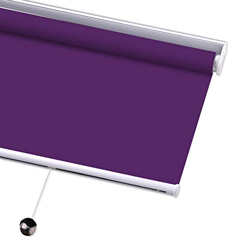 PASSENGER PIGEON Blackout Window Shades, Premium Free-Stop Cordless UV Protection Custom Roller Blinds, 27