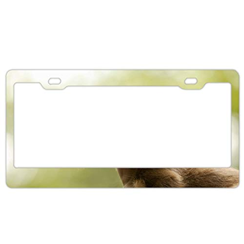 Child Dub Dub Frame (YEX Abstract Dog Kid Big-Eared Tired9 License Plate Frame Car License Plate Covers Auto Tag Holder 6