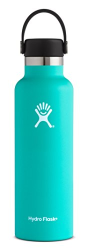 Hydro Flask 21 oz Double Wall Vacuum Insulated Stainless Steel Leak Proof Sports Water Bottle, Standard Mouth with BPA Free Flex Cap, Mint