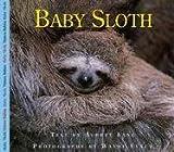 Baby Sloth, Aubrey Lang, 1550418270