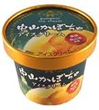 フタバ食品 中山かぼちゃアイスクリーム 12入