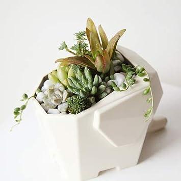 vaso per fiori Scolaposate a forma di elefante scatola per bacchette 14.5*9.5*12CM bianco e grigio. multifunzione da cucina porta spazzolino da denti portapenne