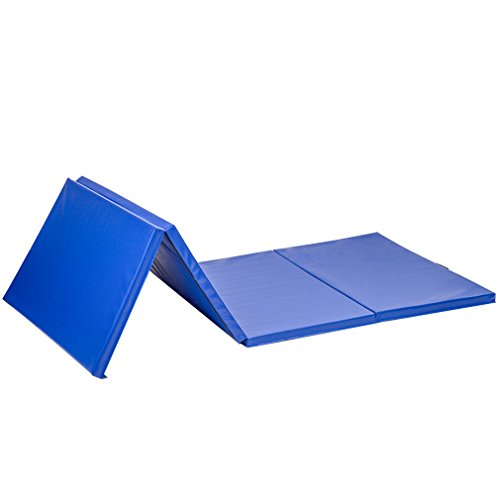 Exercise Mat 4'x10'x2 Thick Folding Panel Gymnastics Mat Gym Fitness with Ebook