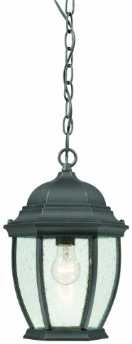 Thomas Lighting SL92337 Covington Outdoor Hanging Lantern, Black