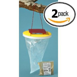 Flies Be Gone Fly Trap (Flies Be Gone - Non Toxic Fly Trap - 2 pack)