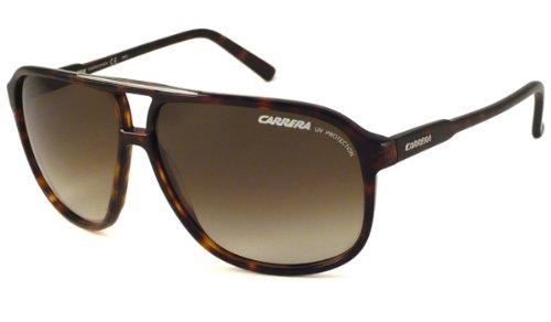 78a646e3553ae0 Carrera Winner 2 Tortoise   Black Frame Brown Lens Plastic Sunglasses   Amazon.co.uk  Clothing