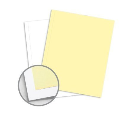 1 Case of 2500 Sets of 8.5 x 11 Pre Collated Carbonless Paper - 2 Part Reverse - White , Canary.