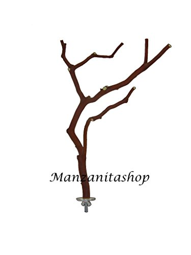 Large Manzanita Bird Perch