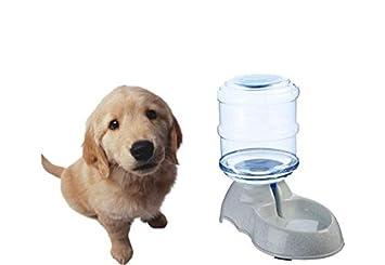 ZT TRADE Alimentador de Agua, Dispensador automático de Agua Comedero para Mascotas para Perros Gato Animal doméstico Tazón de Agua: Amazon.es: Hogar