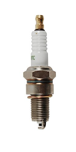 MTD Genuine Parts Spark Plug for Powermore Engines 5X65
