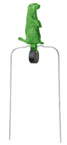 Champion Dog Target (Champion DuraSeal Single Radiation Varmint Spinner Target (5.5-Inch, Green))