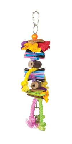 Prevue Hendryx 62507 Tropical Teasers Party Time Bird Toy