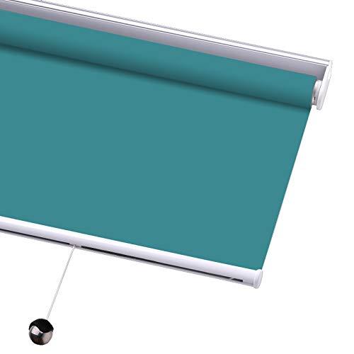 PASSENGER PIGEON Blackout Window Shades, Premium Free-Stop Cordless UV Protection Custom Roller Blinds, 67