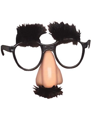 RI Novelty Funny Novelty Disguise Nose and Glasses Prank