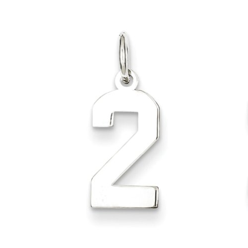 Sterling Silver Small Polished Number 2 Charm, Charms for Bracelets and Necklaces