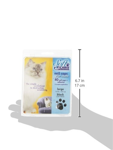 Image of Feline Soft Claws Cat Nail Caps Take-Home Kit, Large, Black