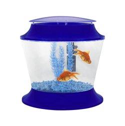 Starter kit blue goldfish bowl set up for children aquatic for Fish bowl amazon