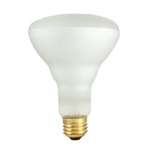 65W 120V Incandescent BR30 Indoor Reflector Flood Light Bulb in Clear (Pack of 2) [Set of 5]