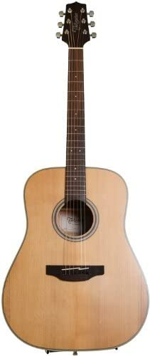 Takamine 6 String Acoustic Guitar, Right Handed, Natural (GD20-NS)