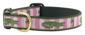 Up Country Alligator Dog Collar MD