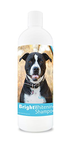 Healthy Breeds Bright Whitening Dog Shampoo for Pit Bull, Black and White- For White, Lighter Fur – OVER 150 BREEDS – 12 oz - With Oatmeal For Dry, Itchy, Sensitive, Skin – Moisturizes, Nourishes Coat by Healthy Breeds