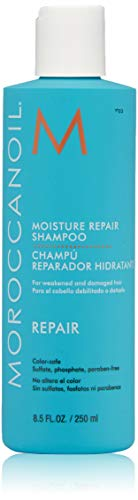 Moroccanoil Moisture Repair Shampoo, 8.5 Fl Oz (Best Damage Repair Shampoo And Conditioner)