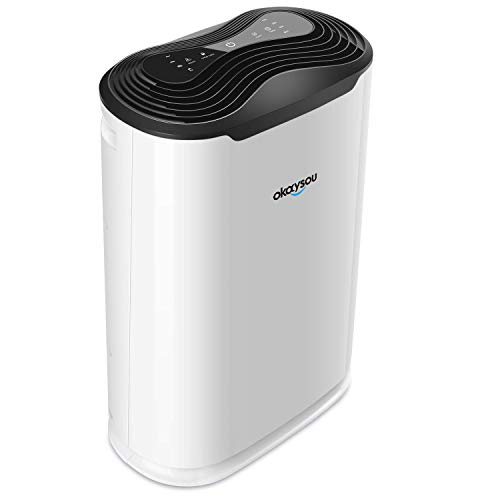 Okaysou 5-in-1 True HEPA Air Purifier for Home Large Room, 3 Speeds Plus Ultra-Duo Filtration System Cleaner Odor Remover, Eliminates 99.97% Smoke, Dust, Pollen, VOCs and More, Timer, Child-Lock Mode