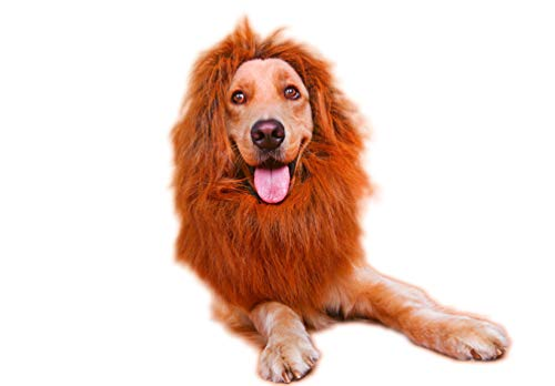 - Dog Lion Mane - Realistic & Funny Lion Mane for Dogs - Complementary Lion Mane for Dog Costumes - Lion Wig for Medium to Large Sized Dogs Lion Mane Wig for Dogs Dark Brown