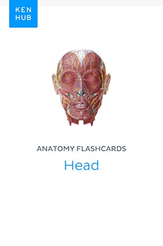 Anatomy Flashcards Head Learn All Organs Muscles Arteries
