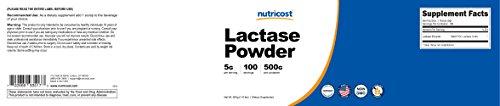 Nutricost Lactase Powder 500 Grams - Pure, Non-GMO, Gluten Free, High Quality Lactase Powder by Nutricost (Image #5)