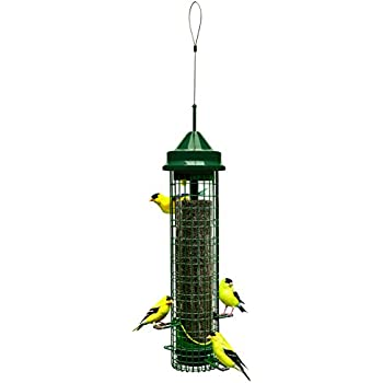 """Squirrel Buster Finch 5.3""""x5.3""""x32"""" (w/hanger) Wild Bird Feeder with 4 Metal Perches and 8 Feeding Ports, 2.4lb Thistle/Nijer Seed Capacity"""