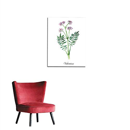 Valerian Collection herb Mural 16