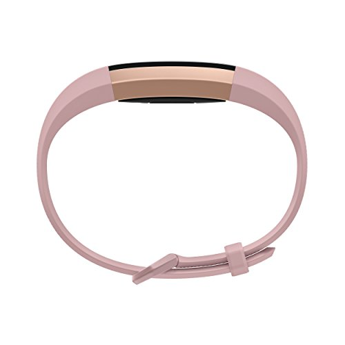 Fitbit Alta HR, Special Edition Pink Rose Gold, Large (US Version) - http://coolthings.us