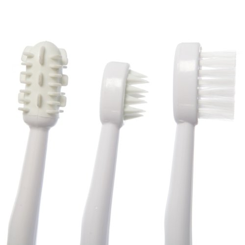 Dreambaby Toothbrush set 3 stage pink