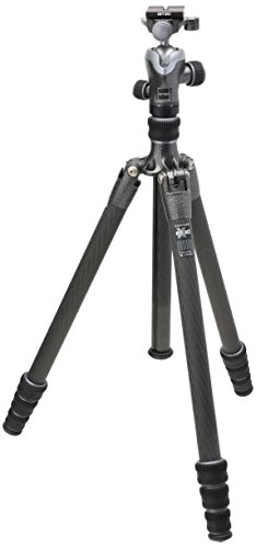 Gitzo GK1545T-82TQD Series 1 Traveler Kit with GT1545T 4 Section Tripod & Head (Black)