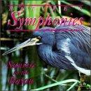Nature's Symphonies: Sunrise in Bayou