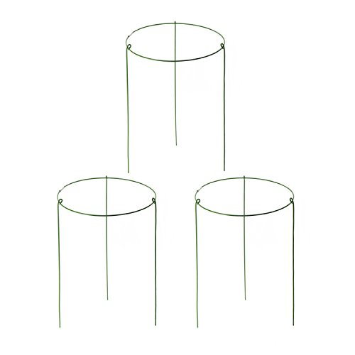 (Garden Plant Support Ring Mini Treils for Potted Plant Pack of 3)
