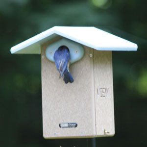Birds Choice Ultimate Bluebird House with 1-9/16'' Hole and Interior Camera