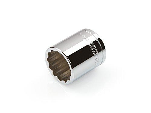 Cr-V TEKTON 14146 3//8-Inch Drive by 14 mm Shallow Socket 6-Point