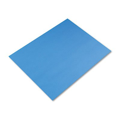 Colored Four-Ply Poster Board, 28 x 22, Light Blue, 25/Carton, Sold as 25 (Colored Four Ply Poster Board)