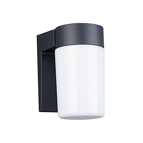 Sea Gull Lighting 8301-12 Single-Light Outdoor Wall Lantern with White Plastic Diffuser, Black Cast (Polycarbonate Diffuser Cast)