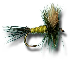 Green Drake Fly Fishing Fly - Size 8 - 6 Pack Green Drake Flies